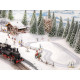 Micro-motion Cross-Country Ski Trail with Aprés-Ski Cabin (H0)